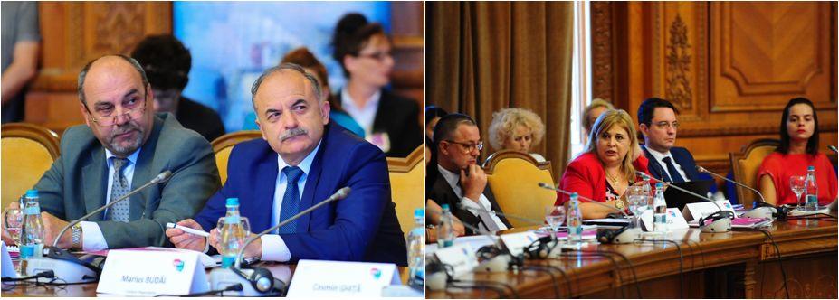 romania-hub-energetic-forum-26-iunie-2018-15